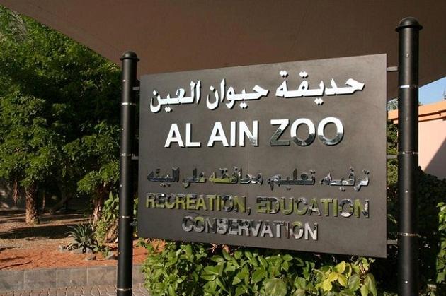 Зоопарк в Аль-Айне – самый крупный (400 га) зверинец на всём Ближнем Востоке