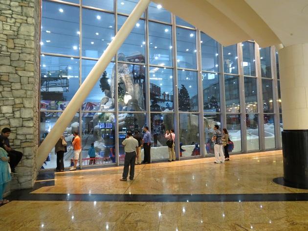Sky Dubai укрылся от песков пустыни в  Mall of the Emirates