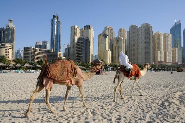 Выбирая гостиницу в ОАЭ почитайте в интеренете, что про неё говорят это поможет составить вам более полную и правдивую картину