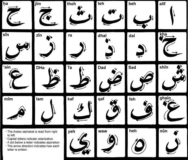 Арабский алфавит состоит из 28 букв, 6 из которых гласные